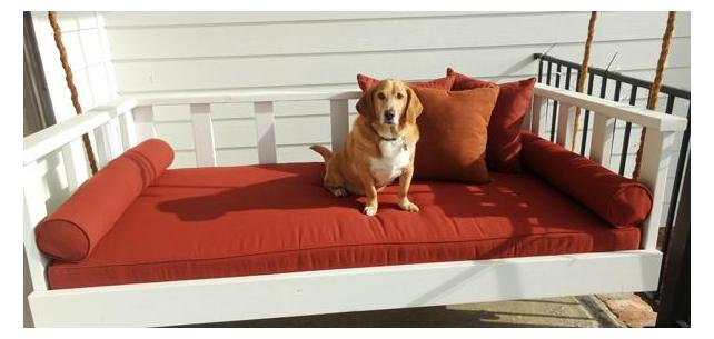 Pup Approved Daybed is Perfect for Holiday Get Togethers