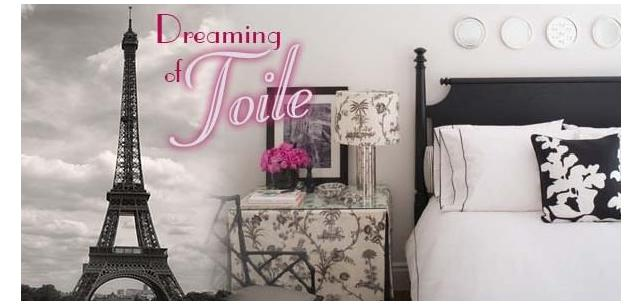Dreaming of Toile Fabric