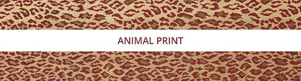Shop By Pattern-Animal Print