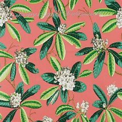 Scalamandre Rhododendron - Outdoor Greys and Greens on Flamingo 4 Upholstery Fabric