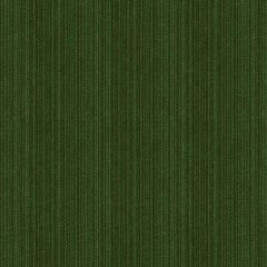 Kravet Contract Strie Velvet 33353-303 Guaranteed in Stock Indoor Upholstery Fabric