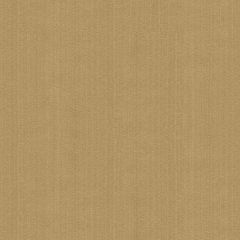 Kravet Contract Tan Strie Velvet 33353-106 Guaranteed in Stock Indoor Upholstery Fabric