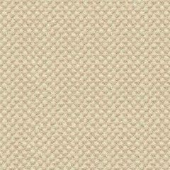 Kravet Sunbrella Beige 25807-116 Guaranteed in Stock Upholstery Fabric