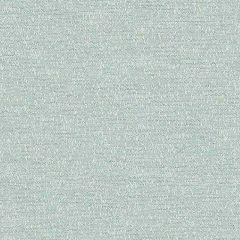 Sunbrella Palazzo Glacier PAL J224 140 European Collection Upholstery Fabric
