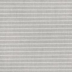 Silver State Sunbrella Murphy Fossil Metropolis Collection Upholstery Fabric