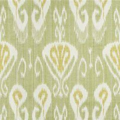 Kravet Sunbrella Magnifikat Grass 31696-23 the Echo Design Collection Upholstery Fabric