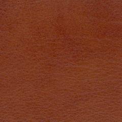Allegro 7065 Old Whiskey Marine Upholstery Fabric