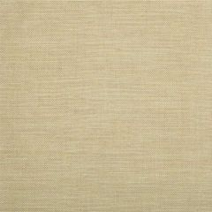 Kravet Sunbrella Capitola Camel 34538-16 Echo Ibiza Collection Upholstery Fabric