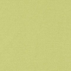 Duralee Lime 32824-213 Decor Fabric