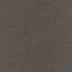Kravet Contract Grey 34632-11 Crypton Incase Collection Indoor Upholstery Fabric