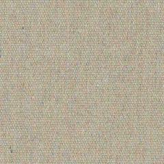 Sunbrella Renaissance Heritage Ashe 18001-0000 Upholstery Fabric