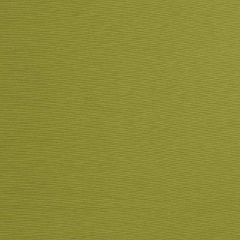 Fabricut Provost-Avocado 2864752  Decor Fabric