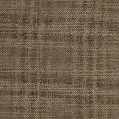 Sunbrella Rochelle Slate 44193-0022 Fusion Collection Upholstery Fabric