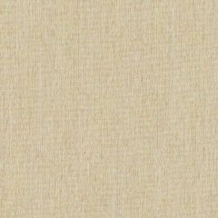 Sunbrella Egg Shell SJA 3963 137 European Collection Upholstery Fabric