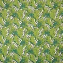 Silver State Sunbrella Amazon Peridot Savannah Collection Upholstery Fabric