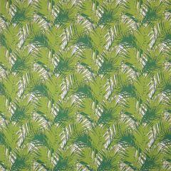 Silver State Sunbrella Amazon Peridot Savannah Collection Upholstery Fabric