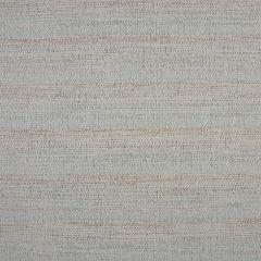 Phifertex Jacquards Echo Opal DBX 54-inch Sling Upholstery Fabric
