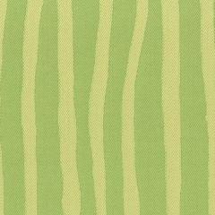Tempotest Molto Bene 916/85 Green/Yellow Zebra Stripe Indoor-Outdoor Upholstery Fabric