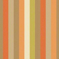 Sunbrella by CF Stinson Contract Flip Flops Papaya 62620 Upholstery Fabric
