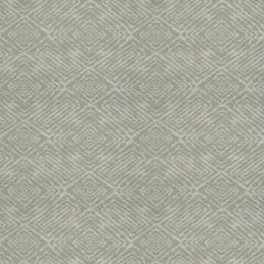 Fabricut Cambiata Mineral 91304-01 Modern Nuances Collection Multipurpose Fabric