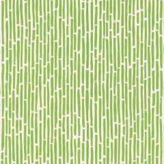 F-Schumacher Bamboo-Spring 5007522 Luxury Decor Wallpaper