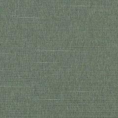 Duralee Kiwi 32734-554 Decor Fabric