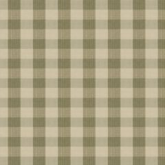 Stroheim Biron Strie Check-Sage by Charles Faudree 6341403 Luxury Decor Fabric