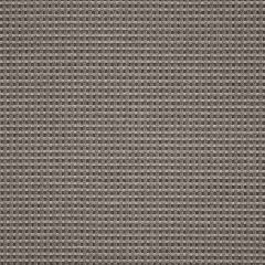 Sunbrella Depth Smoke 16007-0004 Dimension Collection Upholstery Fabric
