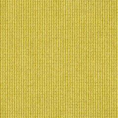 Kravet Contract Junction Wasabi 31550-3 Indoor Upholstery Fabric
