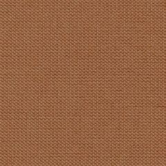Kravet Contract Hampshire Blossom 31855-12 Indoor Upholstery Fabric