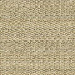 Kravet Sunbrella Skiff Dew 31805-116 Barclay Butera Collection Upholstery Fabric