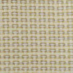 Duralee Buttercup 15572-610 Decor Fabric