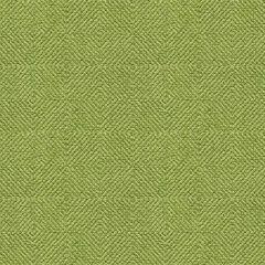 Kravet Smart Green 33002-316 Guaranteed in Stock Indoor Upholstery Fabric