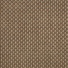 Sunbrella Crystal Latte 50186-0001 Sling Upholstery Fabric