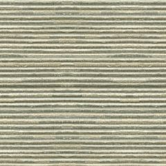 Kravet Modern Ottoman Mineral 24920-15 Indoor Upholstery Fabric