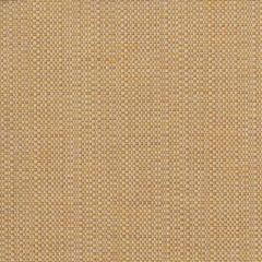Perennials Raffia Fresco Clodagh Collection Upholstery Fabric