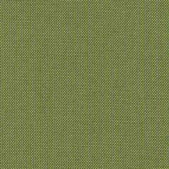 Sunbrella Spectrum Cilantro 48022-0000 Elements Collection Upholstery Fabric