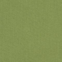 Sunbrella RAIN Spectrum Cilantro 48022-0000 77 Waterproof Upholstery Fabric