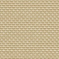 Kravet Sunbrella Weaver Wicker 30828-1616 Soleil Collection Upholstery Fabric