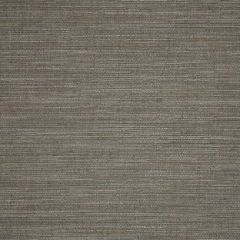 Sunbrella Collect Charcoal 50203-0003 Sling Upholstery Fabric