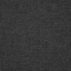 Sunbrella Essential Coal 16005-0005 The Pure Collection Upholstery Fabric