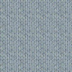 Fabricut Saranac Indigo 4247 Vignettes Collection by Kendall Wilkinson Multipurpose Fabric