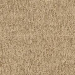Sunbrella Beige 78001-0000 The Terry Collection Upholstery Fabric