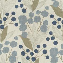 Kravet Capparis Aegean 516 the Echo Home Collection Multipurpose Fabric