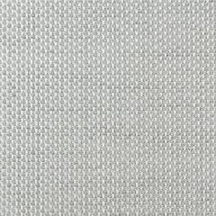 Sunbrella Augustine Alloy 5928-0042 Sling Upholstery Fabric