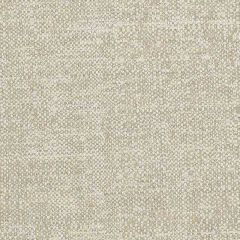 Sunbrella Chartres Lichen CHA J192 140 European Collection Upholstery Fabric