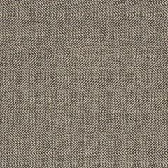 Sunbrella Boss Tweede II Stone 45893-0024 Fusion Collection Upholstery Fabric