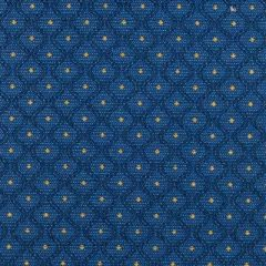 Duralee Blue 15561-5 Decor Fabric