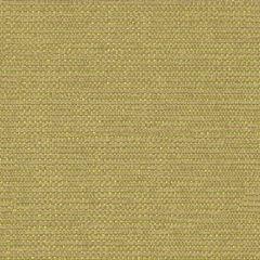 Kravet Contract Beaming Wasabi 31546-3 Indoor Upholstery Fabric