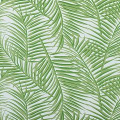 Sunbrella Thibaut West Palm Woven Kiwi on White W80565 Oasis Collection Upholstery Fabric